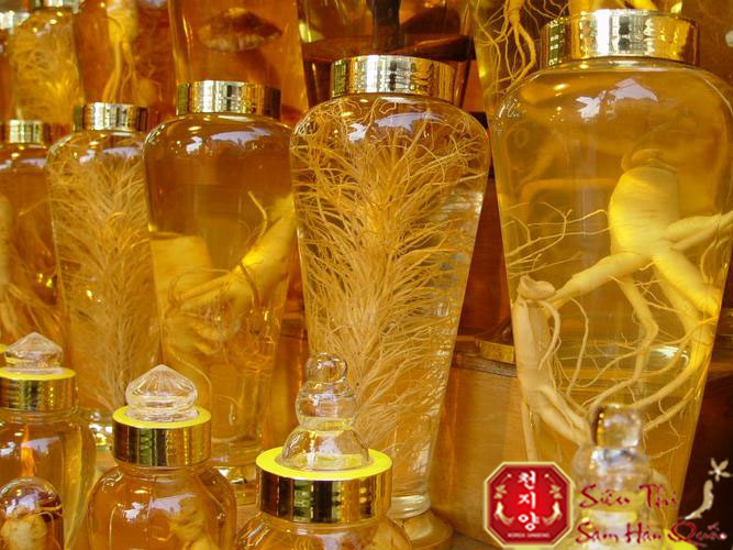 Review Rượu sâm Hàn Quốc loại rượu tốt cho sức khỏe nam giới