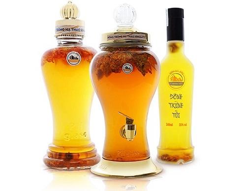 rượu đông trùng hạ thảo 1l tăng cường sinh lực hiệu quả