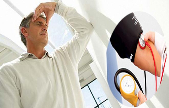 tác dụng của hồng sâm trong điều hòa huyết áp