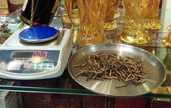 Đông trùng hạ thảo nguyên con tây tạng loại 20g
