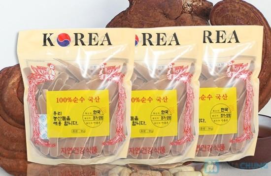 Giá nấm linh chi ở đâu Việt Nam tốt nhất hiện nay?