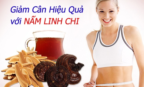 nam-linh-chi-giam-can