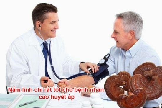 Hãy sử dụng nấm linh chi để trị dứt điểm bệnh huyết áp cao