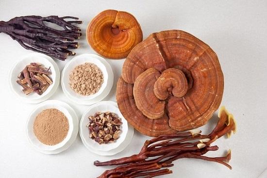 Khoa học đã chứng minh nấm linh chi có tác dụng trong điều trị bệnh cao huyết áp
