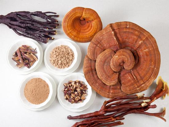 Nấm linh chi 2 tai/kg nghiền thành bột sử dụng