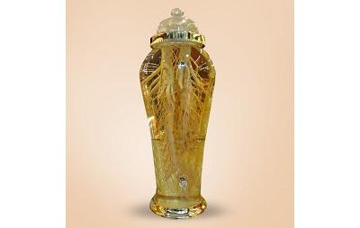 Bình rượu sâm Hàn Quốc 41 lít loại sâm lớn gồm 2 củ 1 kg