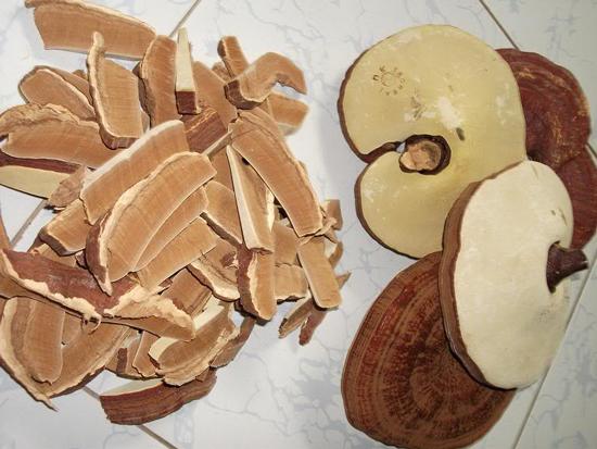 Nên chọn mua nấm linh chi cổ hàn quốc chất lượng