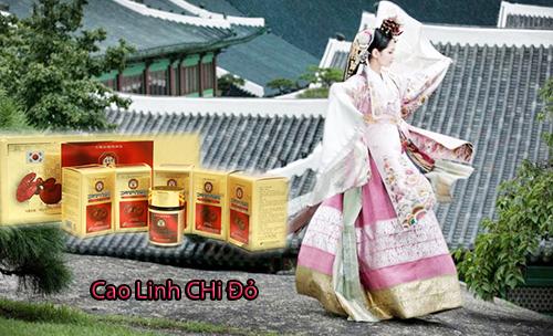 Cao Linh Chi Đỏ - Phòng chống bệnh tật cực kỳ hiệu quả