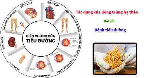tác dụng của đông trùng hạ thảo đối với bệnh tiểu đường