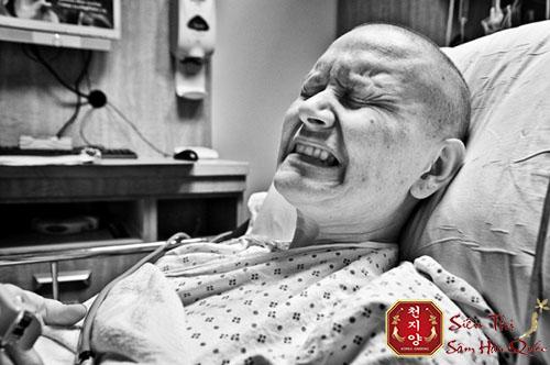 tác dụng của nhân sâm trong việc điều trị ung thư