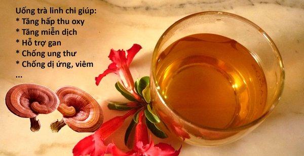 Uống trà mang lại nhiều lợi ích đối với người sử dụng