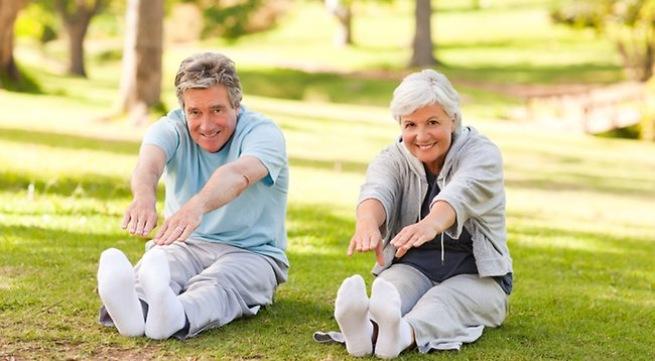 Sử dụng nấm linh chi đá đỏ tăng hệ miễn dịch, giúp cơ thể luôn khỏe mạnh