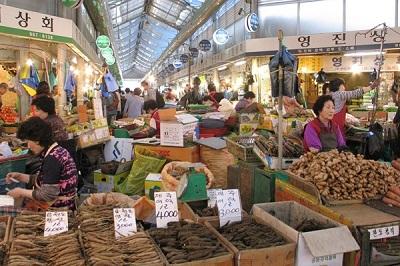 Tư vấn mua nấm linh chi tại hàn quốc cần biết khi du lịch