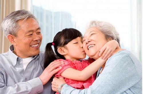 cao hồng sâm linh chi- sản phẩm tốt cho người già