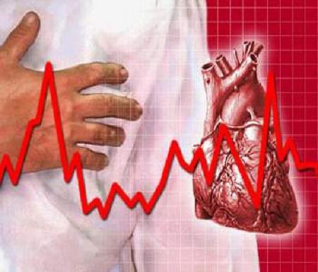 công dụng của cao linh chi hộp gỗ 360g với hệ tim mạch