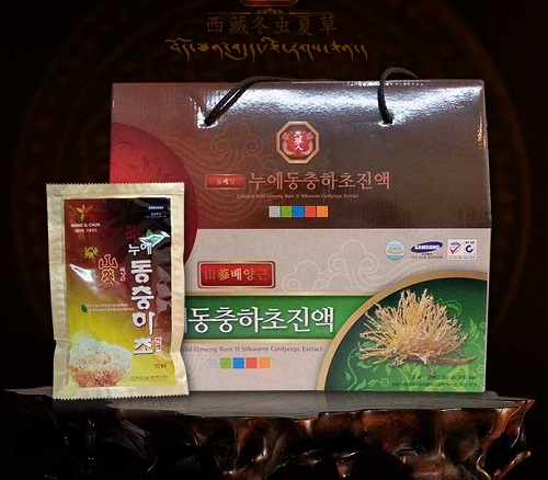 Culture Wild Ginseng Root&Silkworm Cordyceps